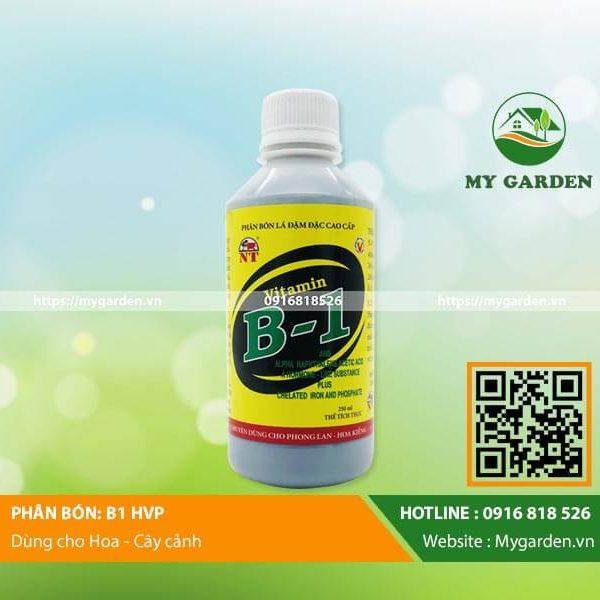 Phân bón lá vitamin B1 HVP giúp cho cây phát triển mạnh, tránh được các bệnh hại