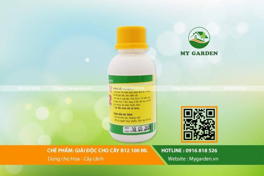 B12-mygarden-0916818526 3