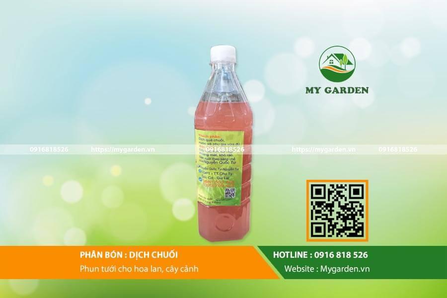 Dich chuoi-mygarden-0916818526 2