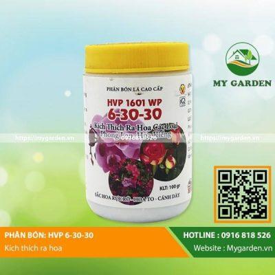 HVP63030-mygarden-0916818526 1