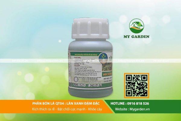 Lân xanh đậm đặc tạo điều kiện phát triển tốt nhất cho cây