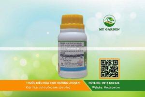 Litosen-mygarden-0916818526-hinh-2