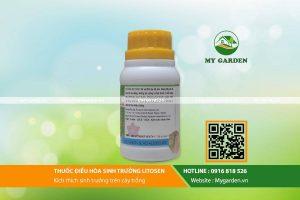 Litosen-mygarden-0916818526-hinh-3