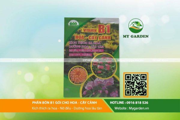 Phan-bon-Vitamin-B1-goi-mygarden-0916818526-hinh-1