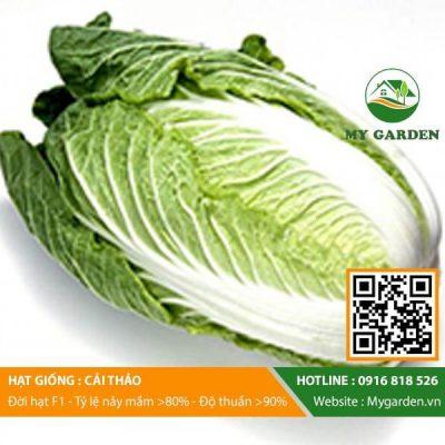 Hat-giong-Cai-thao-My-Garden-hinh-22