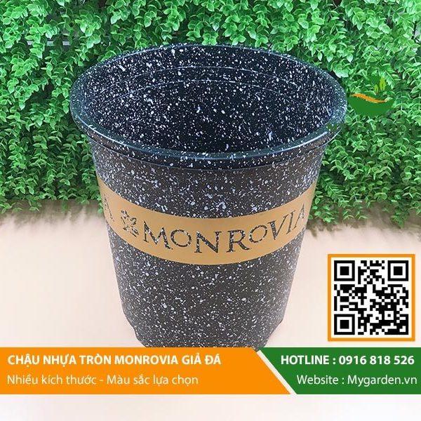 Chau-monrovia-7gl-nhua-trong-cay-hinh-1
