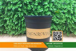 chau-monrovia-nhua-5gl-trong-cay-hinh-4