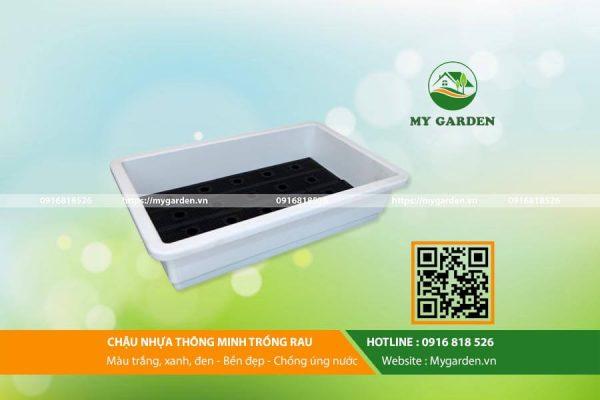 Chau-nhua-thong-minh-trong-rau-mygarden-0916818526-hinh-2