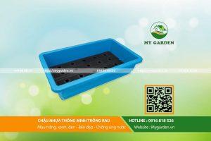 Chau-nhua-thong-minh-trong-rau-mygarden-0916818526-hinh-4