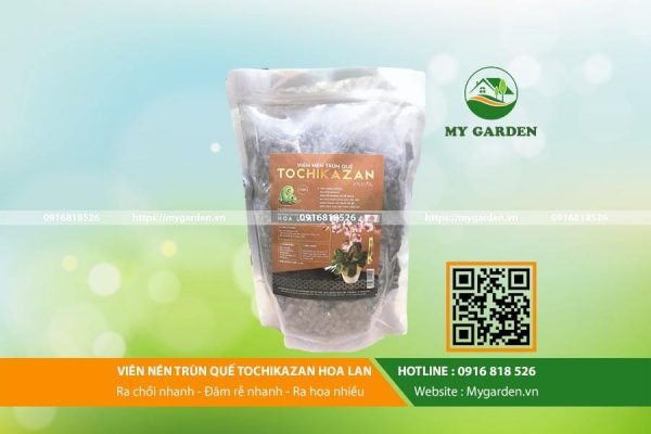 Vien-nen-trun-que-TOCHIKAZAN-hoa-lan-mygarden-0916818526-hinh-1