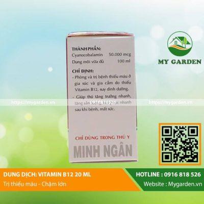 Vitamin-B12-dong-vat-mygarden-0916818526-hinh-2