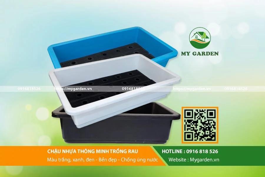 Chậu nhựa là sản phẩm không thể thiếu cho mô hình trông rau sạch tại nhà quy mô nhỏ