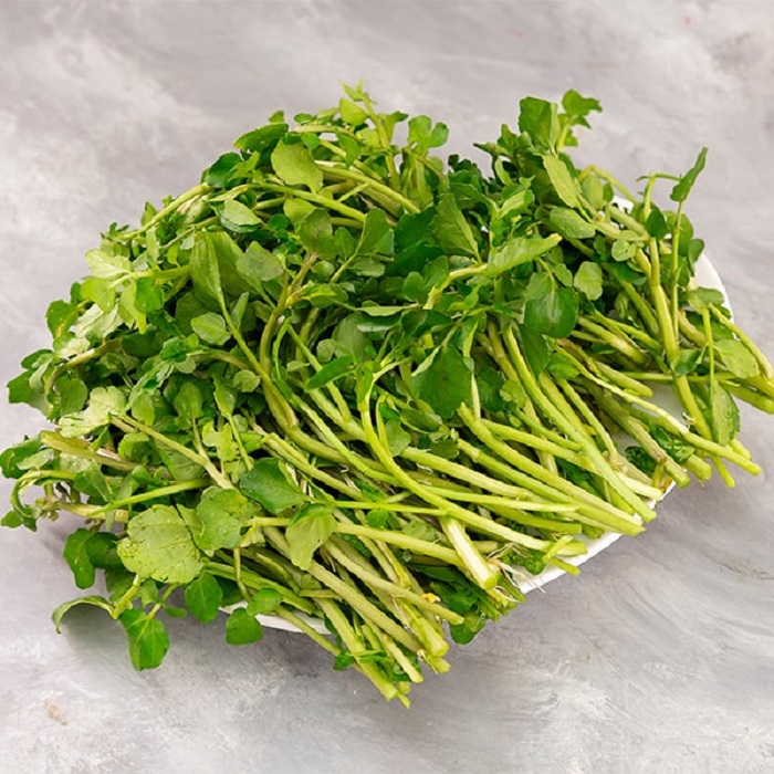 Cách trồng rau cải xoong đơn giản