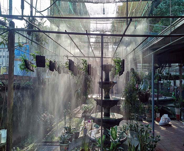 hệ thống tưới phun sương cho vườn lan