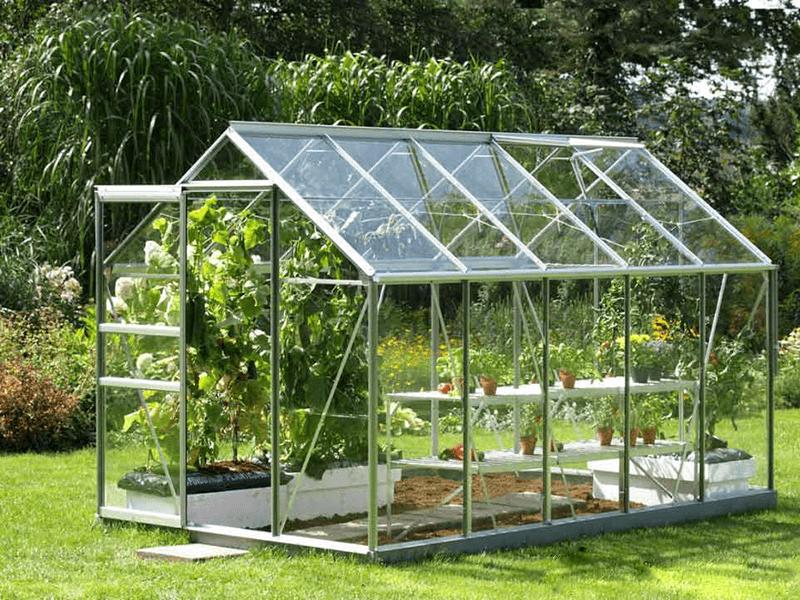 Nhà kính trồng rau mini đang ngày càng phổ biến