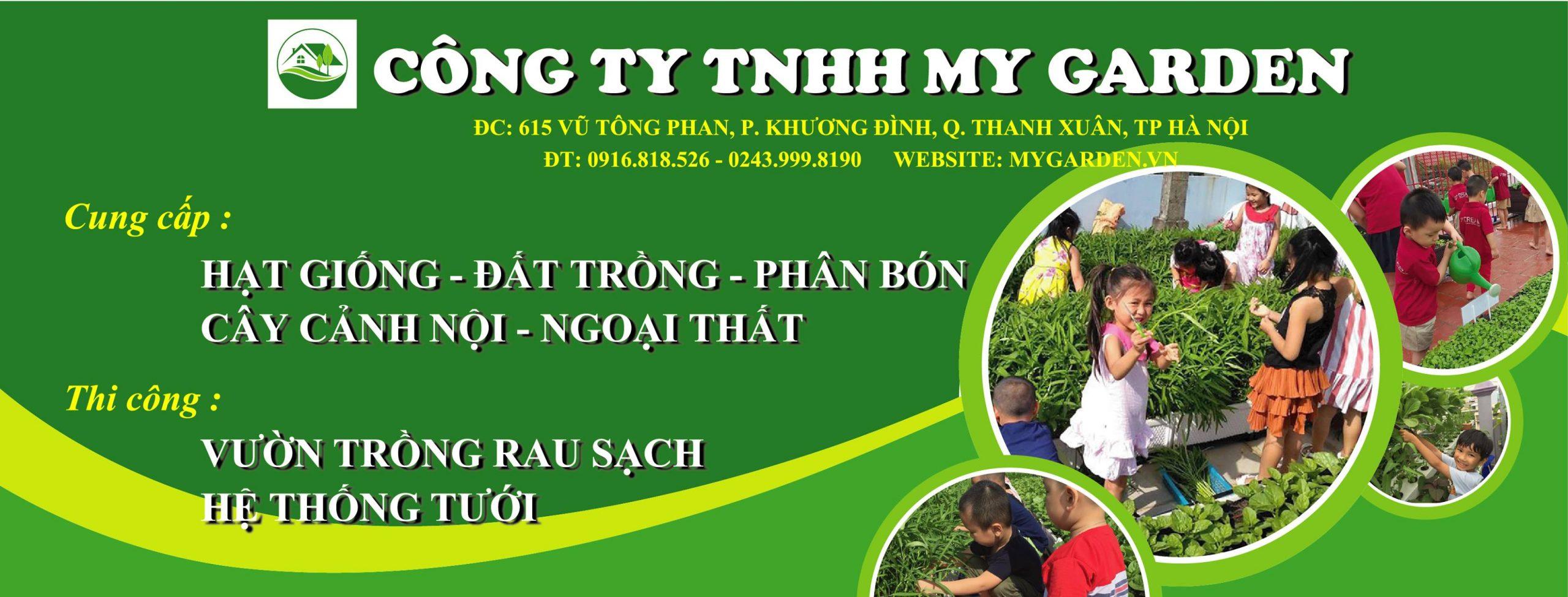 thiet-ke-vuon-rau-san-thuong-3
