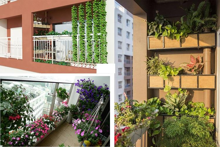 Mô hình trồng cây ở chung cư mà bạn cần biết