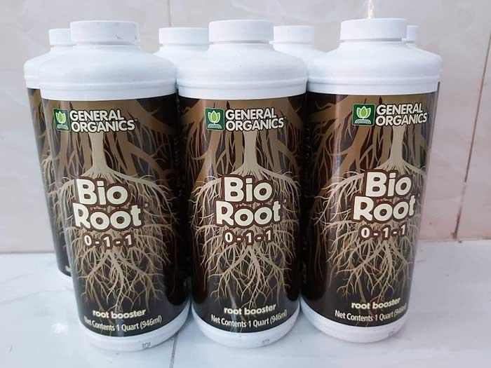 Phân bón bio root