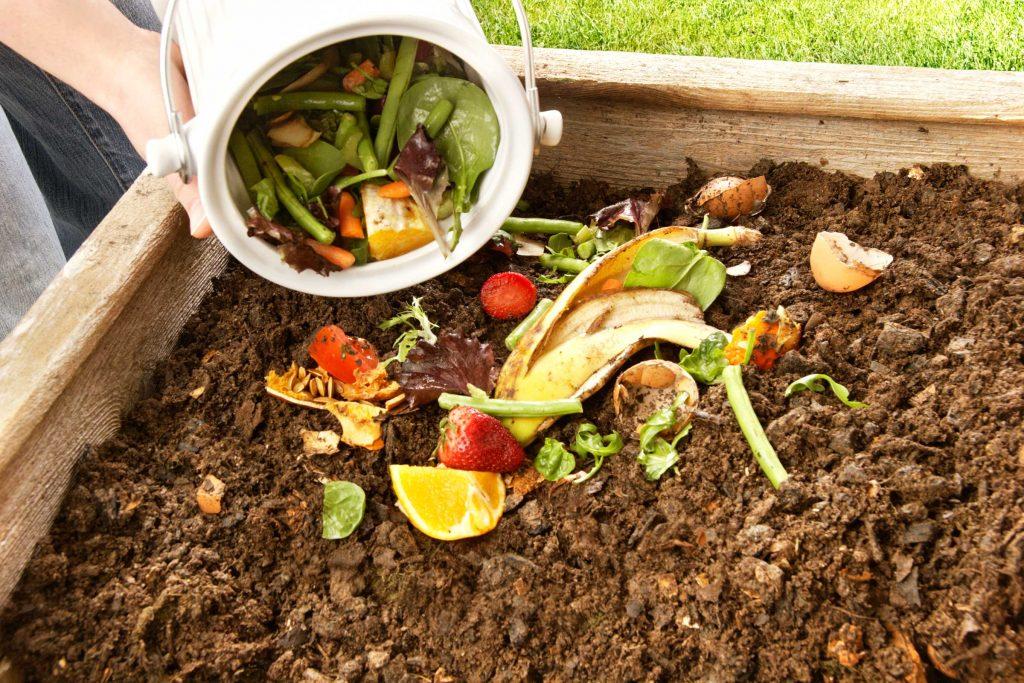 Chất thải hữu cơ sử dụng làm phân xanh