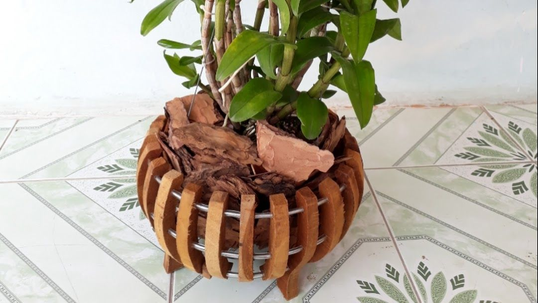 Chậu gỗ trồng Lan