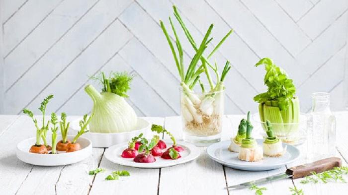 10 loại rau củ trồng lại