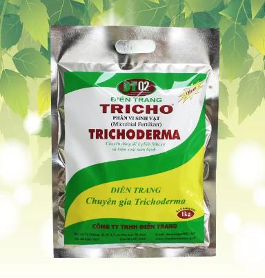 Chế phẩm sinh học Trichoderma