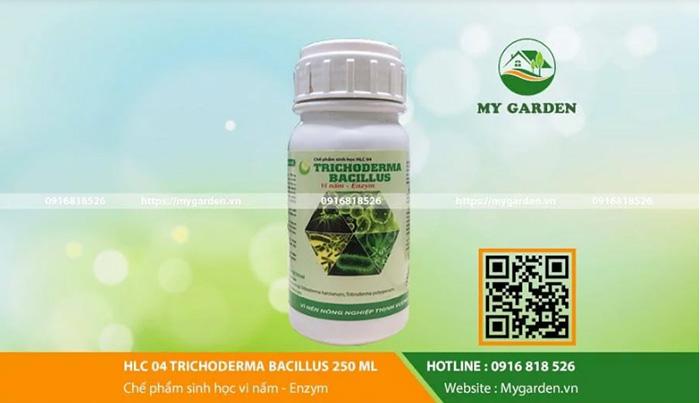 Thuốc đặc trị nấm cho cây trồng
