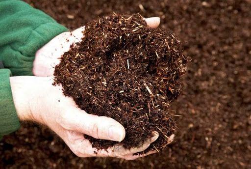Phân bón Quế Lâm cải tạo đất trồng