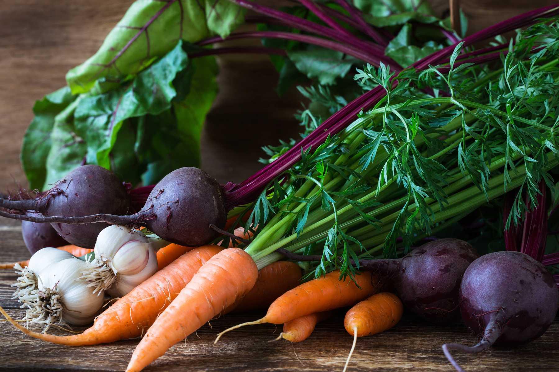 Chăm sóc vườn rau mỗi ngày để thu được thành quả tốt nhất