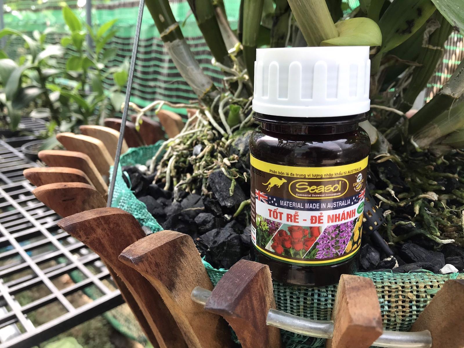 Seasol - phân bón lá không thể thiếu cho cây trồng