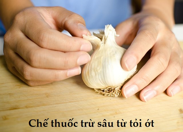 thuoc-tru-sau-khong-doc-hai-3