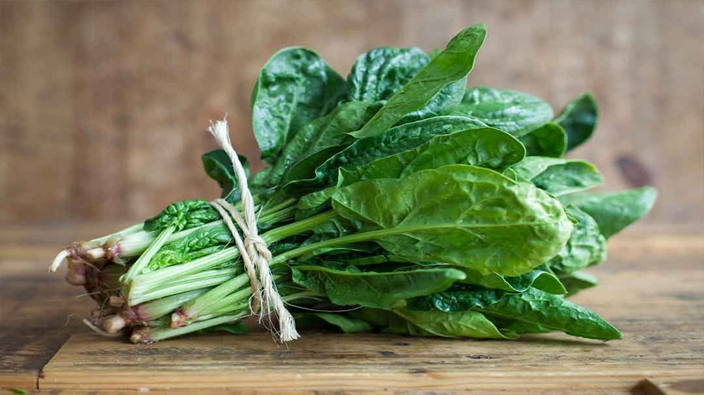 Cải bó xôi chứa hơn 30 loại vitamin và những dưỡng chất thiết yếu