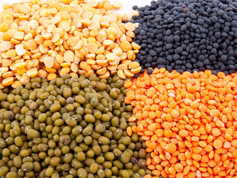 Hạt giống là yếu tố quyết định đến sự nảy mầm của cây trồng