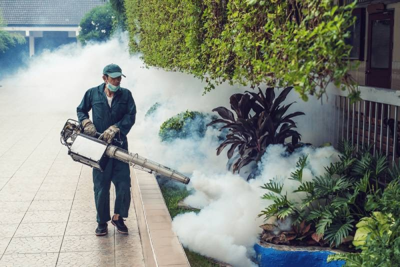 Phun thuốc diệt muỗi côn trùng cần tuân thủ đúng hướng dẫn