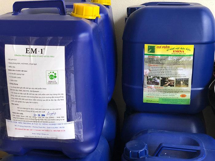 tự làm thuốc trừ sâu sinh học tại nhà EM gốc