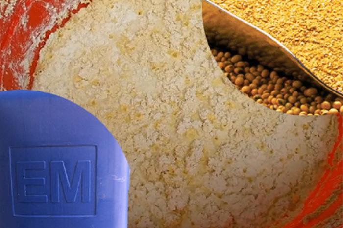 cách ủ đậu tương làm phân bón cho cây trồng